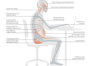 Sitzen ist das neue Rauchen! Trainingsprogramm und Lösungen:      Teil 3/5