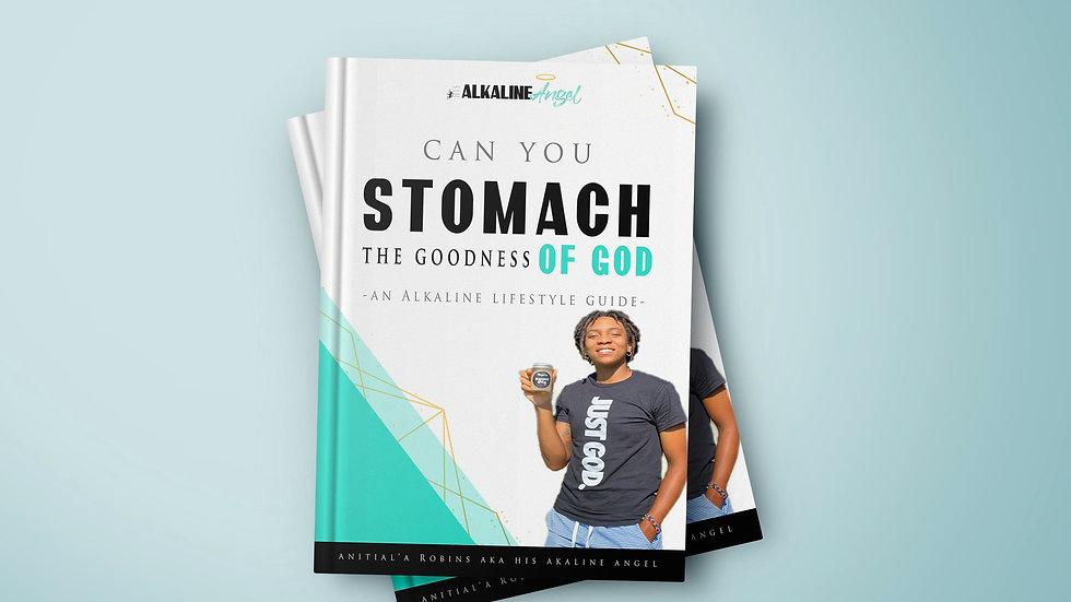 Book Publishing Promo Kit