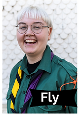 Leiterbild_Fly.PNG