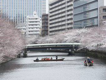 Прямые рейсы до Токио от авиакомпании Аэрофлот