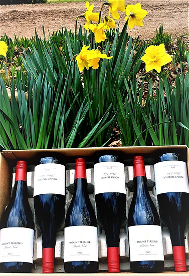 SPRING COMES EARLY: MIXED 2017, 2018 AND 2019 PINOT NOIR X 1/2 CASE