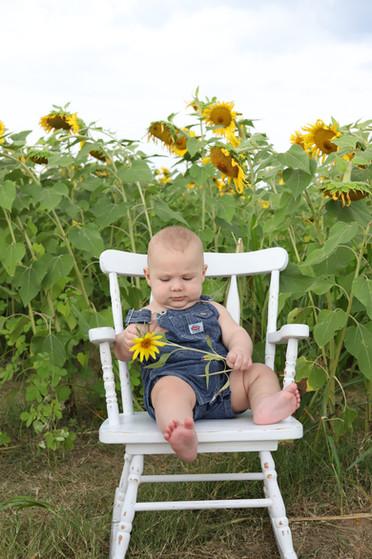 sweet baby in sunflowers