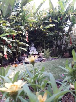 Jardim Zen!