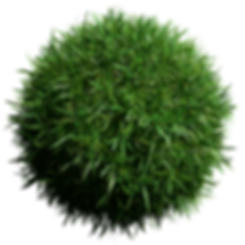 grass ball.png