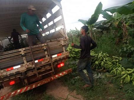 Prefeitura garante escoamento da produção para o pequeno produtor