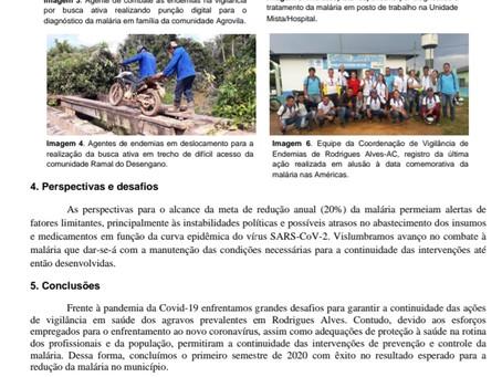 Boletim epidemiológico da malária de Rodrigues Alves