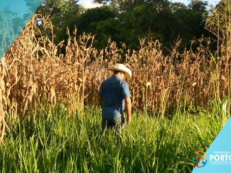 Prefeitura garante colheita e escoamento da produção