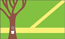 Bandeira_Assis_ACRE.jpg