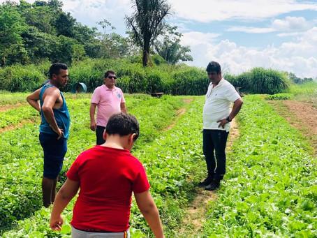 Prefeito Gilson da Funerária visitou produtor de hortaliças