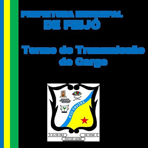 Termo de Transmissão de Cargo Nº 213/2020