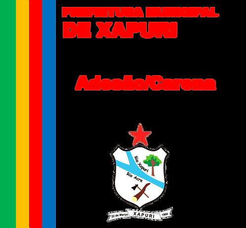 Adesão/Carona - PP SRP N°013/2018