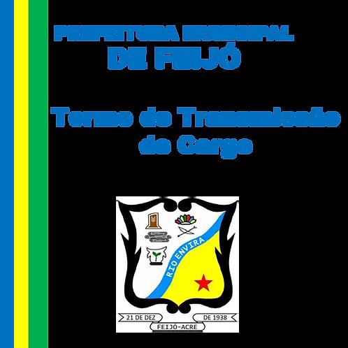 Termo de Transmissão de Cargo Nº 227/2020
