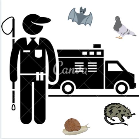 Controle de Roedores Urbanos e Animais Sinantrópicos