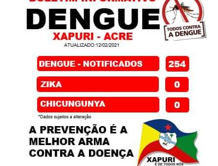 Boletim Dengue, atualizado em 12 de Fevereiro de 2021