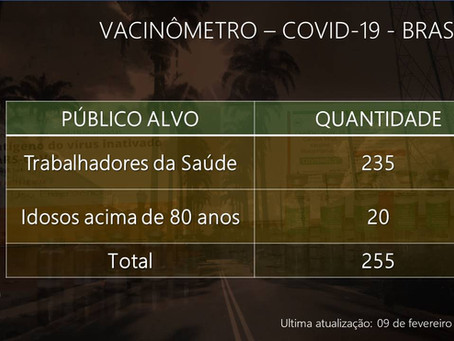 Vacinômetro - Covid-19 - 09/02/2021
