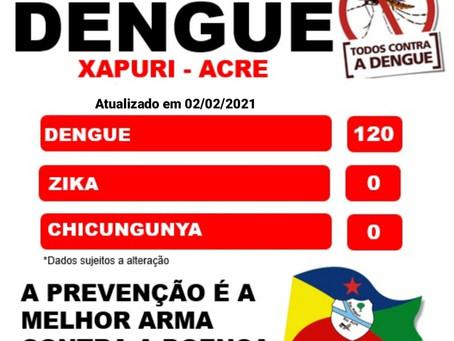Boletim Dengue, atualizado em 02 de Fevereiro de 2021