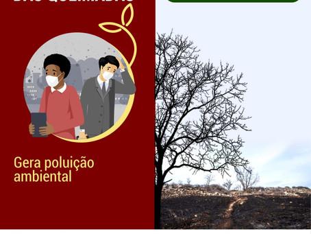 Na Semana do Meio Ambiente, secretaria de Rodrigues Alves alerta sobre queimadas