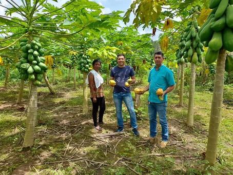 Câmara de Capixaba apoia produtores e buscam melhorias para o campo