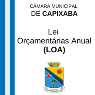 LOA 2021- Lei n° 603/2020