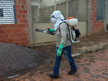 Combate à dengue: Prefeitura realiza ações de bloqueio e controle de criadouros do mosquito