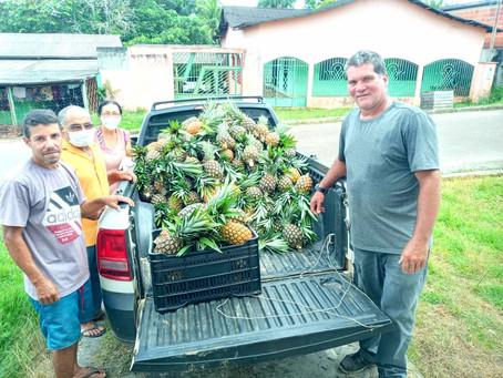 Prefeitura de Rodrigues Alves, através da Secretaria de Agricultura, atendem aquisição de alimentos