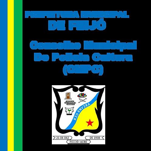 Decreto N°069/2020 Aprova o Regimento do Conselho Municipal de Política Cultural