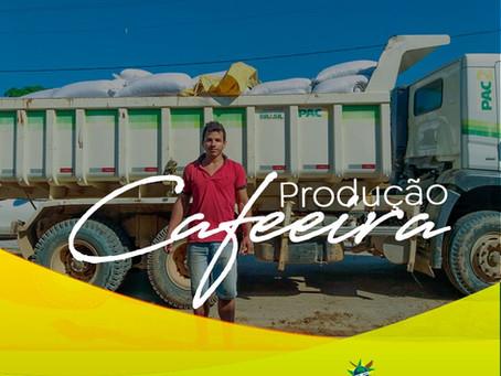 Produção cafeeira é destaque em Manoel Urbano