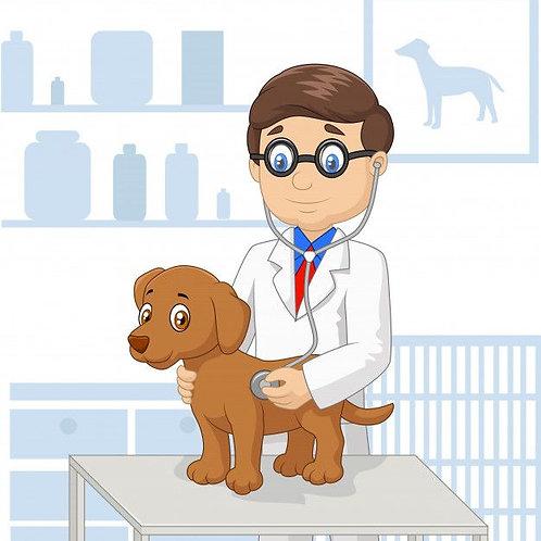 Exame para Diagnóstico de Leishmaniose Tegumentar Americana em Cães