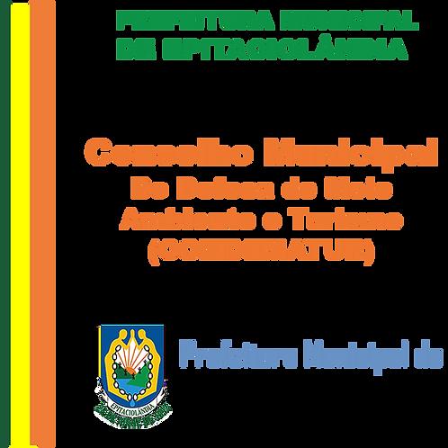 Decreto N° 088/2019 - COMDEMATUR
