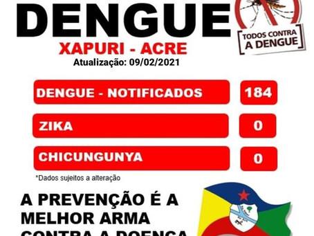 Boletim Dengue, atualizado em 09 de Fevereiro de 2021