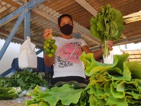 Prefeitura do Quinari: medidas sanitárias, para que os feirantes voltem a trabalhar em segurança