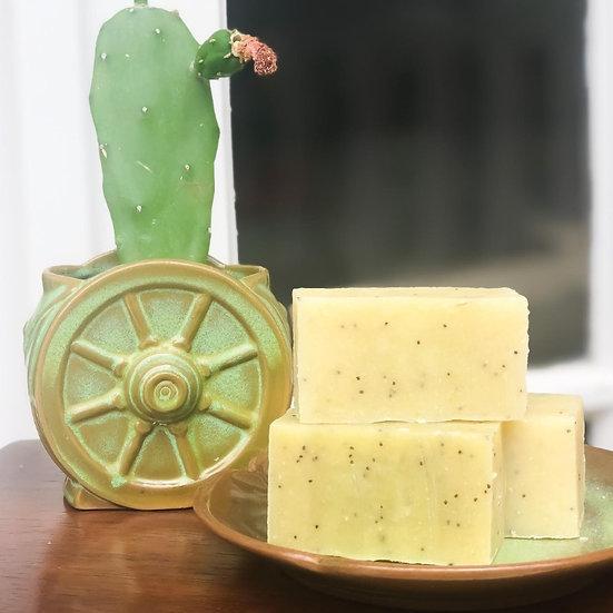 Confident Cactus