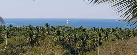 View from Iguana room at Casa Arcoiris