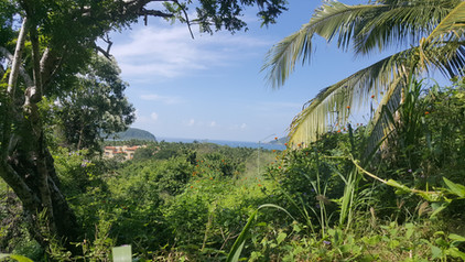 View of Zihuatanejo bay from Casa Arcoir