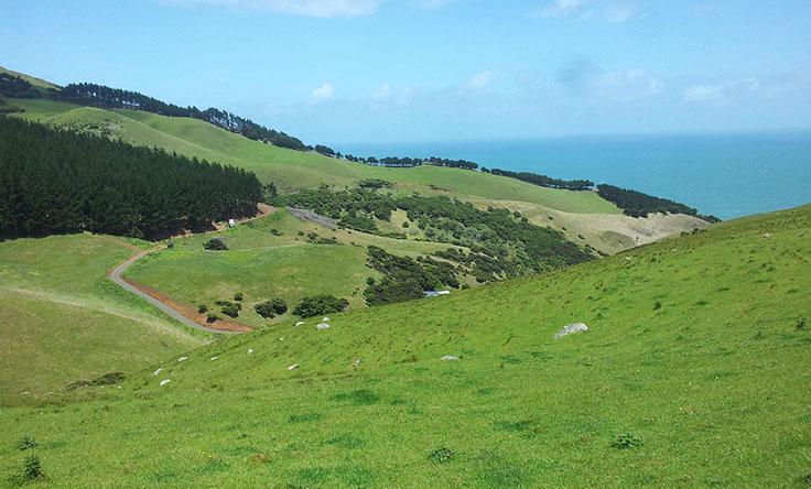 Farm-NZ