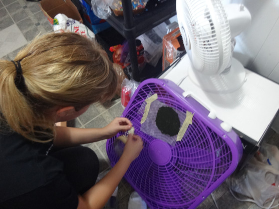 Day 1 (9/24/17) - Colleen dries the first sample