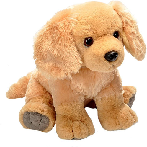 Pet Shop Golden Retriever