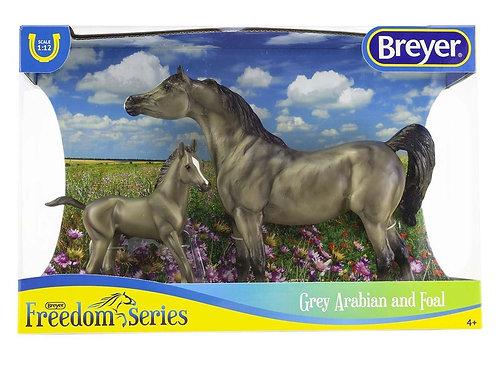 GREY ARABIAN HORSE & FOAL