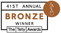 Bronze_2020_41st Telly Awards.png