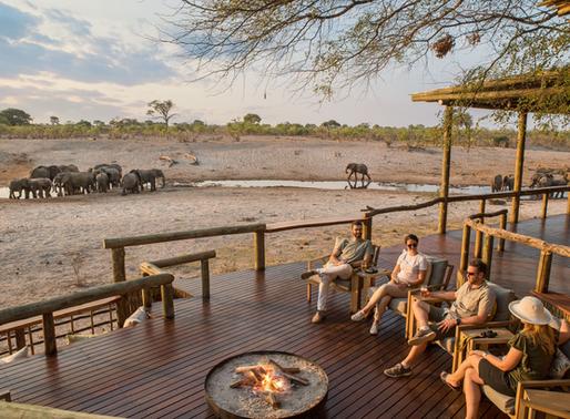 Desert and Delta Safaris – Making an impact amidst Covid-19