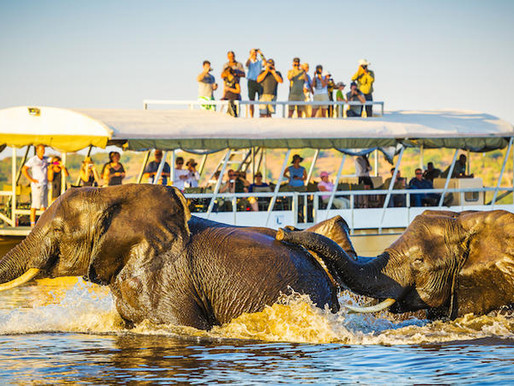 Botswana Touts Regional And Domestic Travel Post Coronavirus