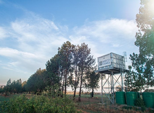 Water tank demand rises in Botswana, highlights Concerns over water infrastructure