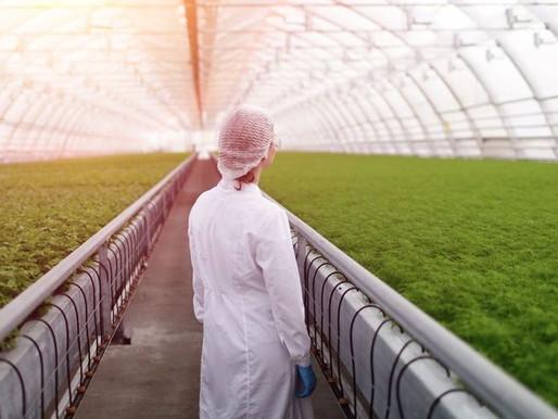 New Animated Film Marks International Year Of Plant Health 2020