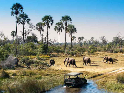 HATAB's CEO Lilly Rakorong Speaks on Botswana's Domestic Tourism Market
