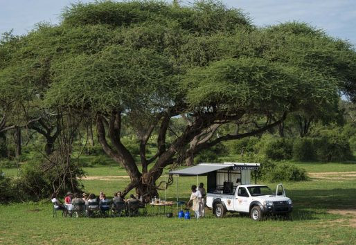 Flame of Africa offering dream safaris in Chobe
