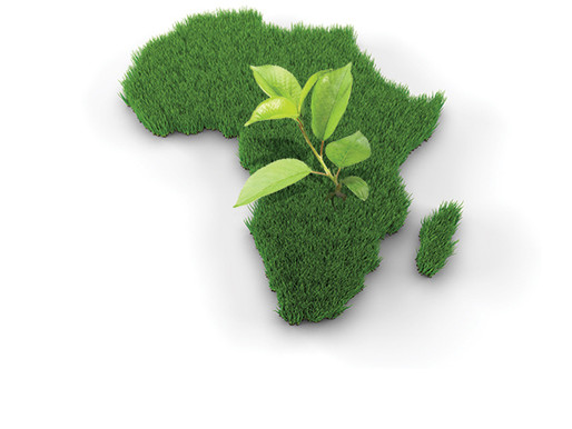 Investing in Africa – Competition for Foreign Direct Investment (FDI)