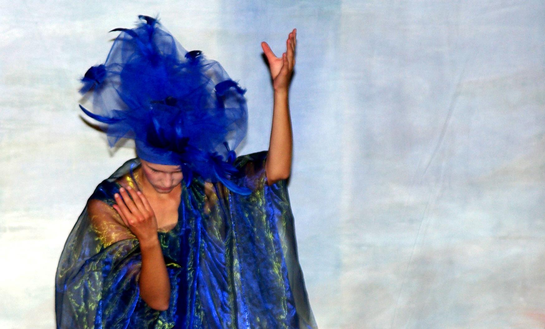Blauer Vogel letzte Seite2