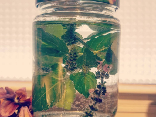 Holy Basil Cold Infusion