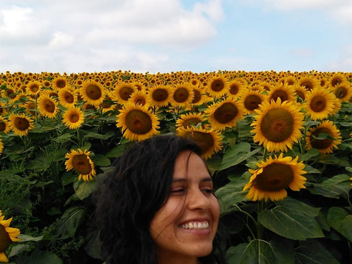 Sunflowers and Nature Healing