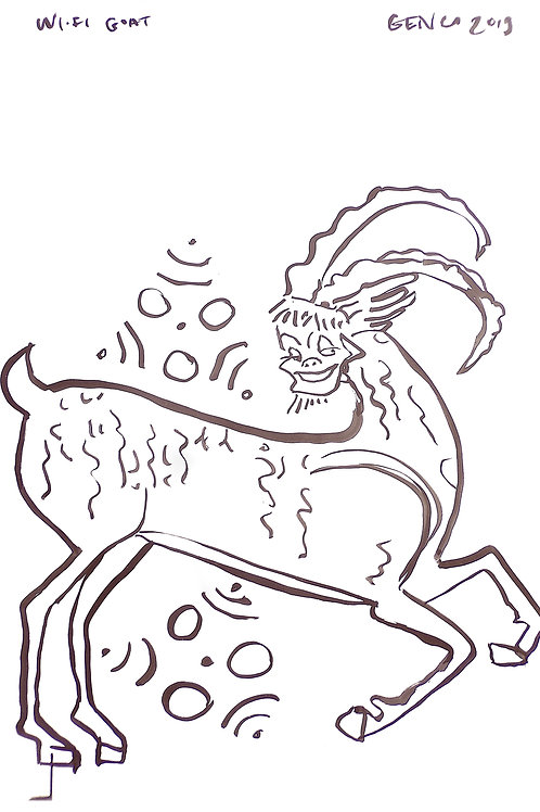 Wi-Fi Goat